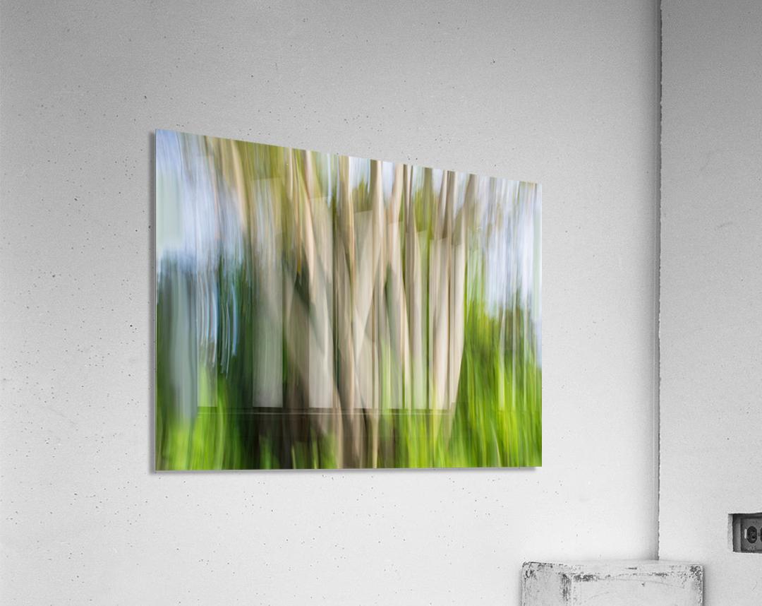 Moving Trees 30 Landcape 52 70 200px  Acrylic Print