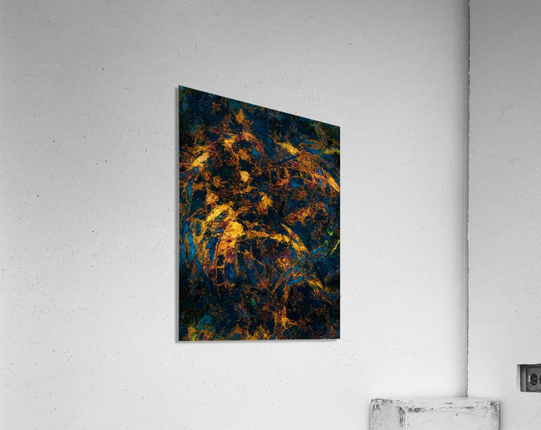 Chasm  Acrylic Print