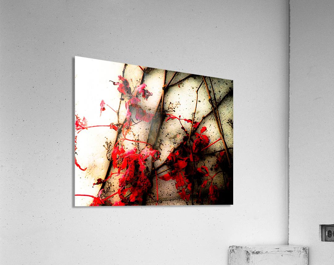 Endless   Impression acrylique
