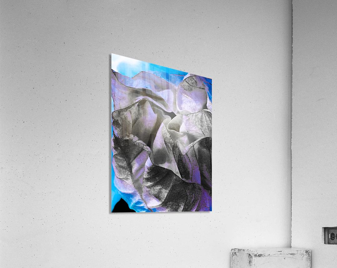 Moments    Impression acrylique