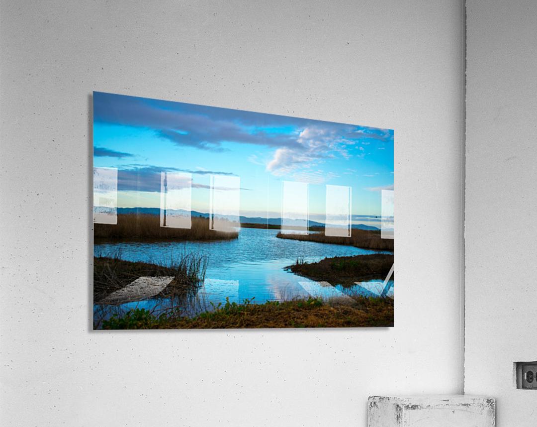 20190228 DSC_0065 2  Acrylic Print