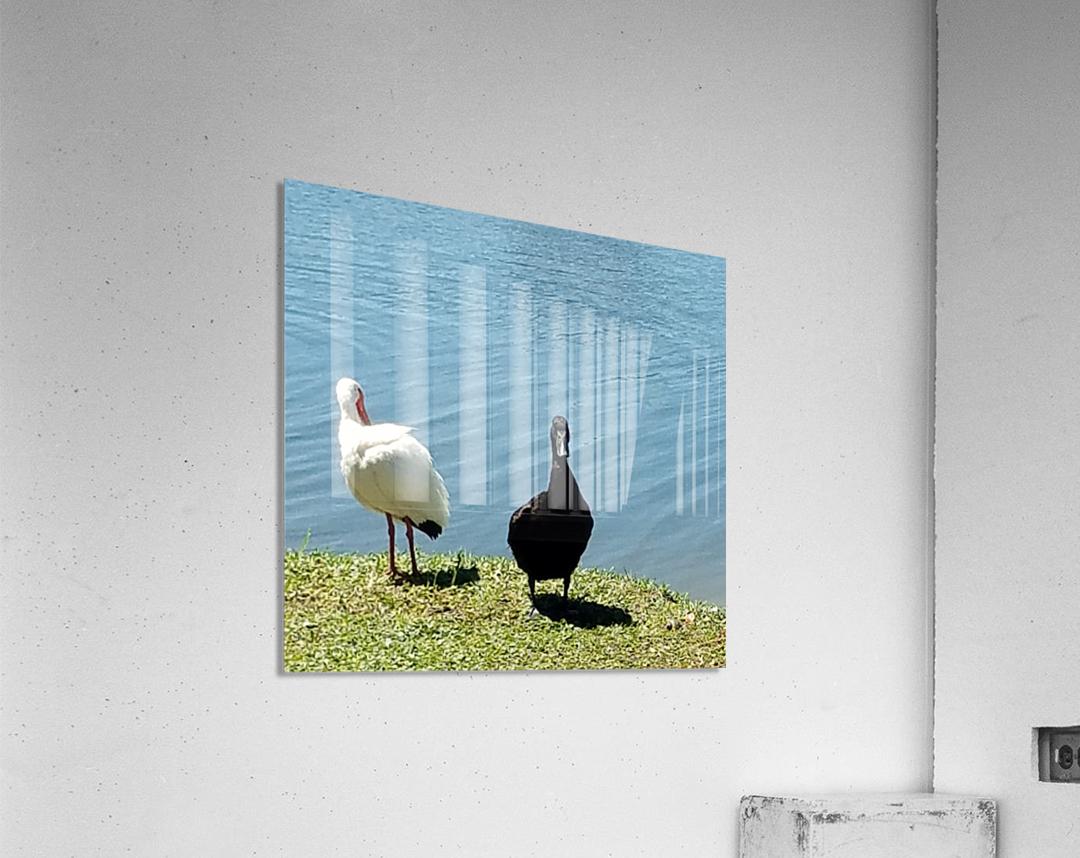 20190406_145356  Acrylic Print