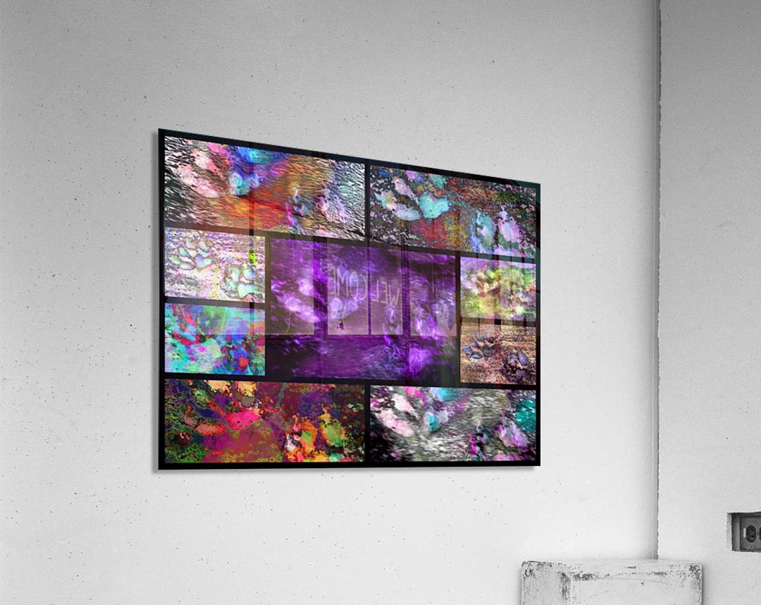 Crazy Paw Print Collage  Acrylic Print