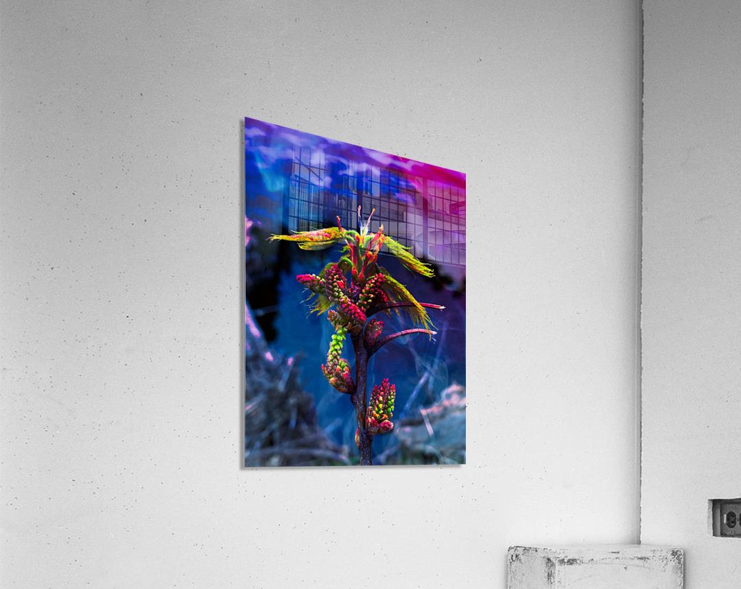 Spaces   Impression acrylique