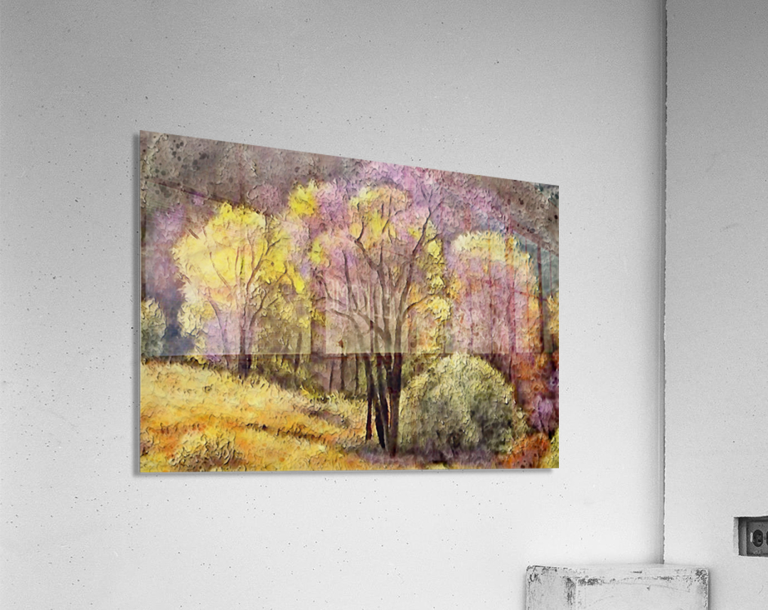 outdoor nature natural woods  Acrylic Print