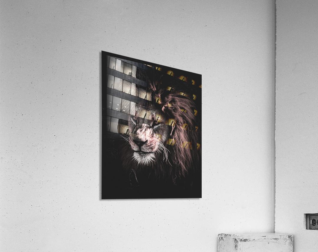 lion painting  Acrylic Print
