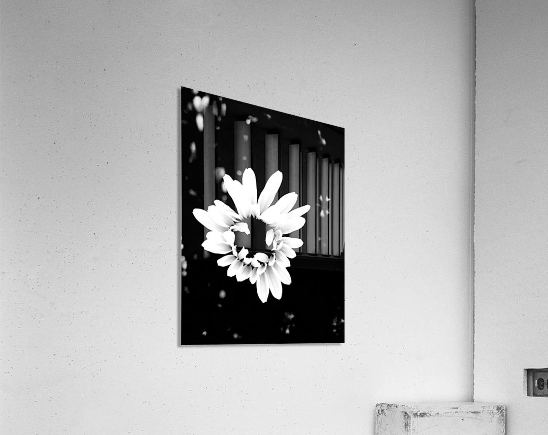 Never alone   Impression acrylique