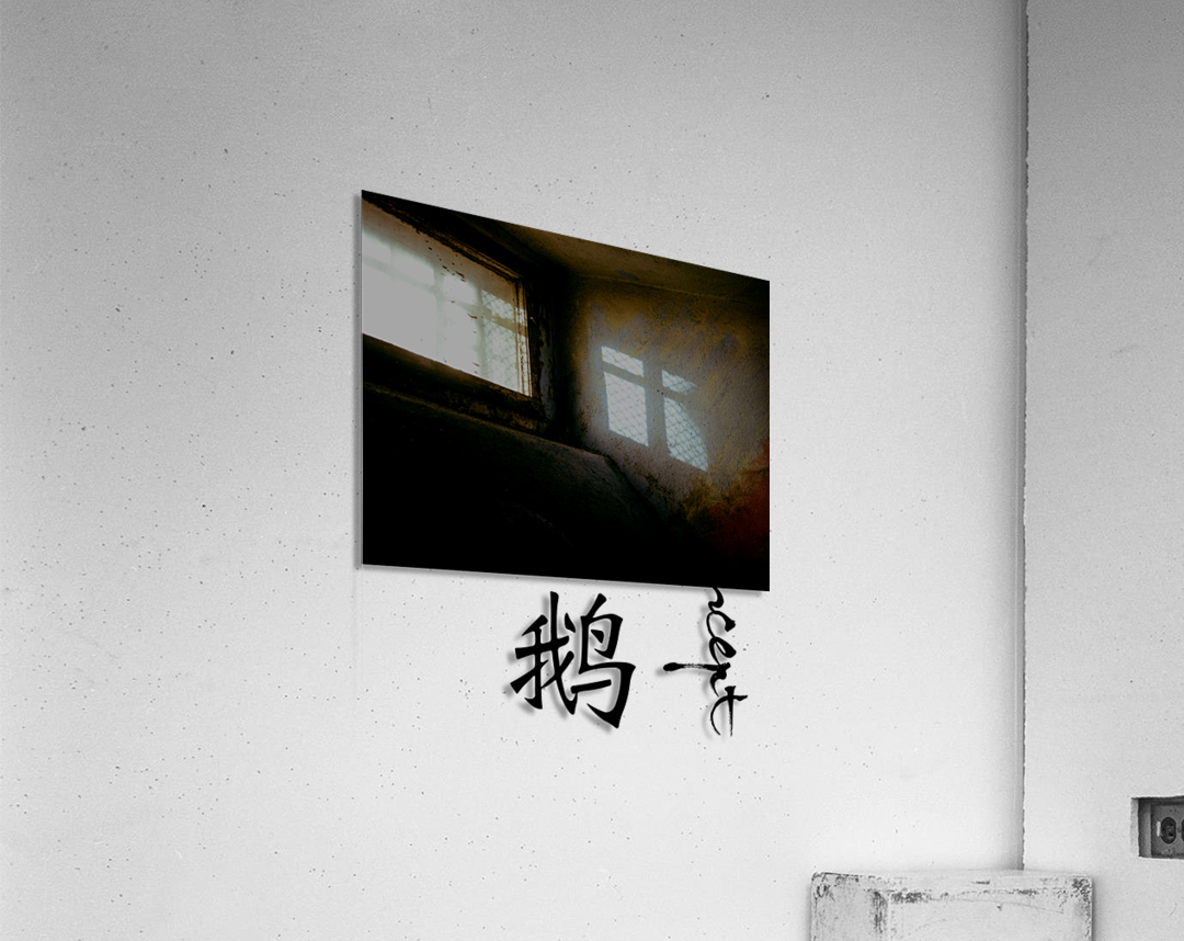 Chinese Concept 22A  Acrylic Print