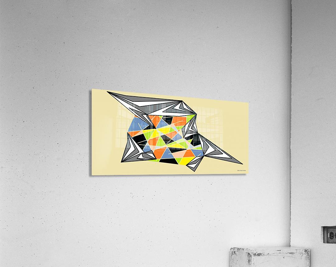 Starship  Acrylic Print
