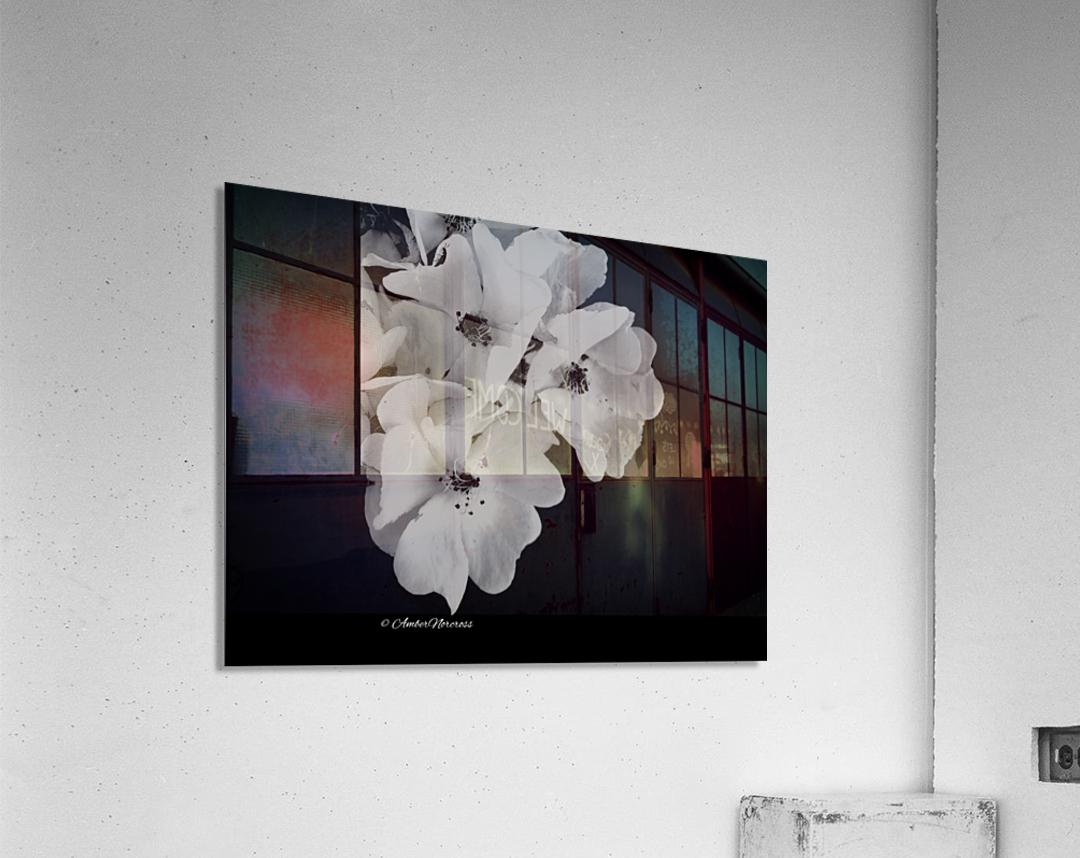Prose  Acrylic Print