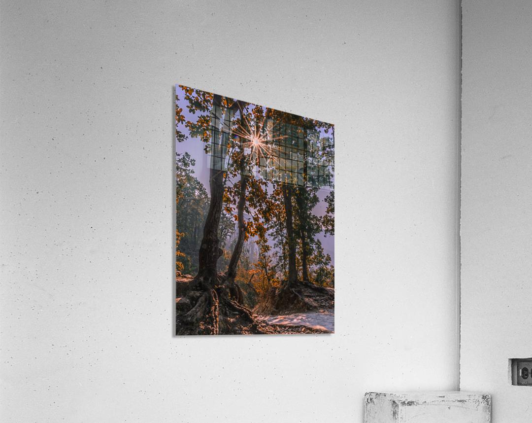 DSC_0328  Acrylic Print