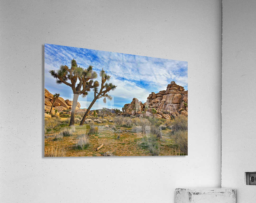 Im just a guest  Acrylic Print