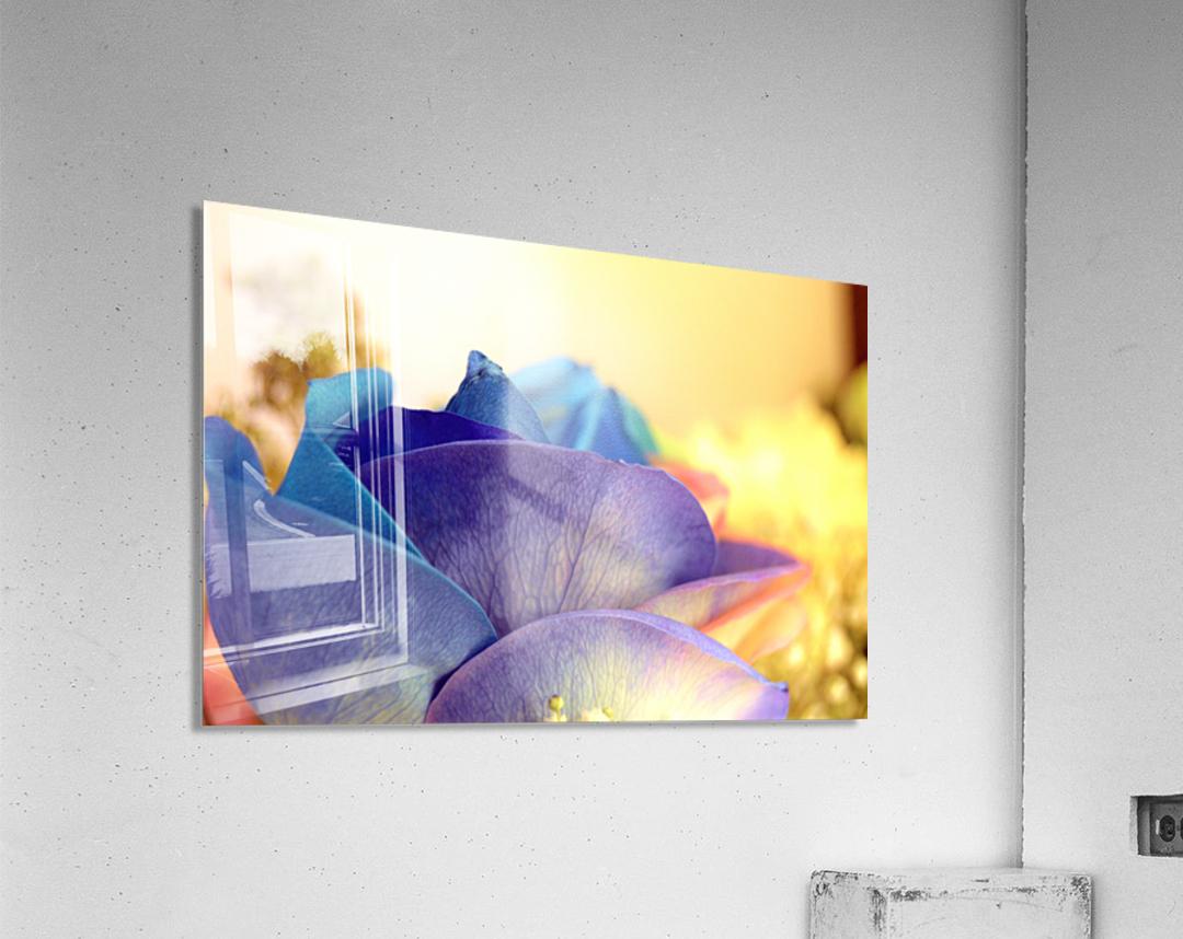 Colourful Days  Acrylic Print