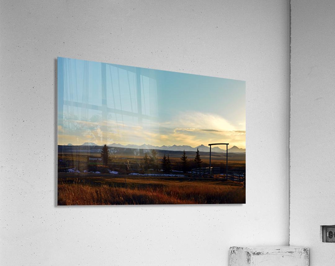 Bloomin  Acrylic Print