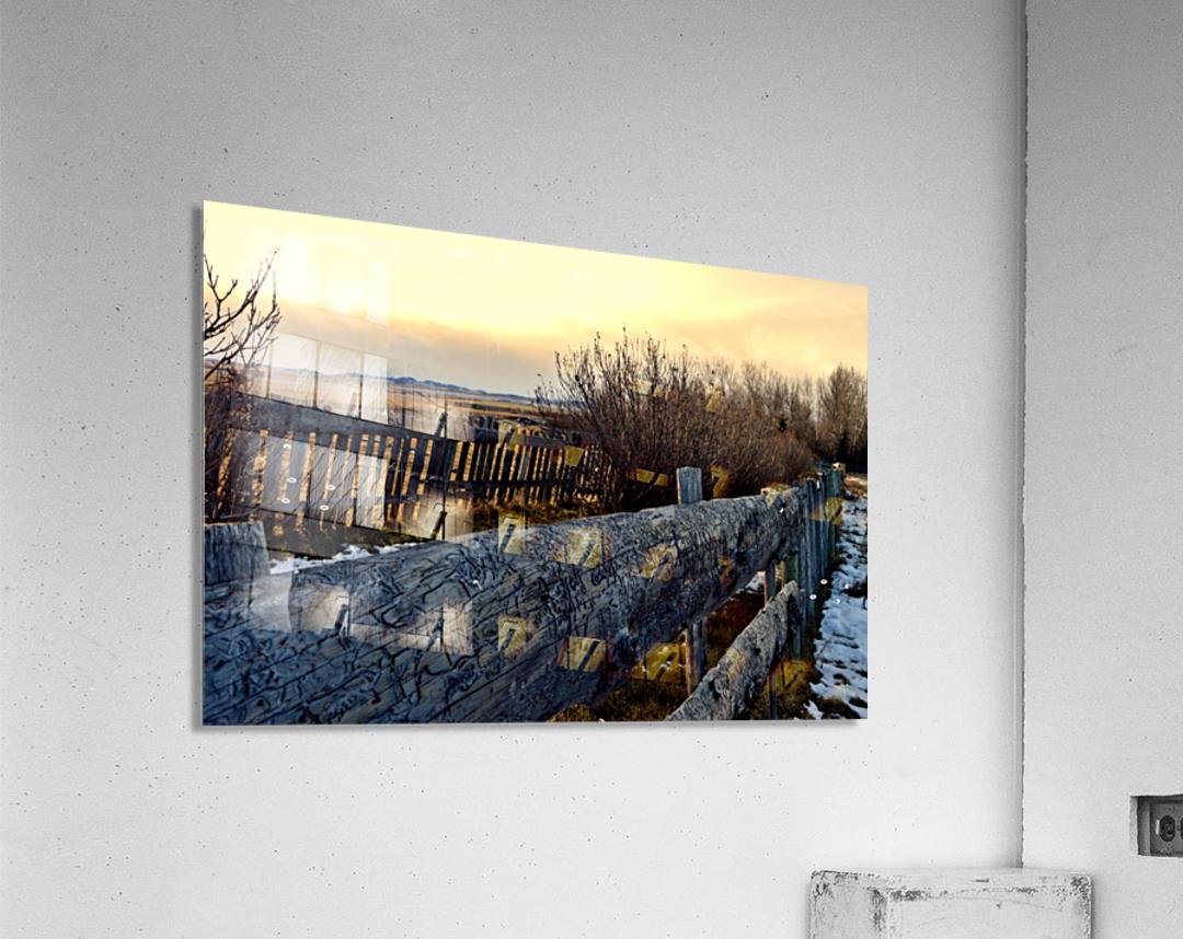 On The Fence  Acrylic Print
