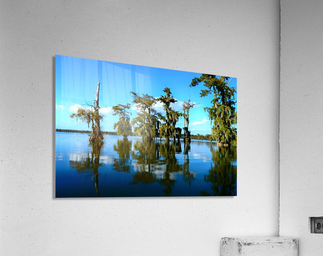 Reflect Much  Acrylic Print