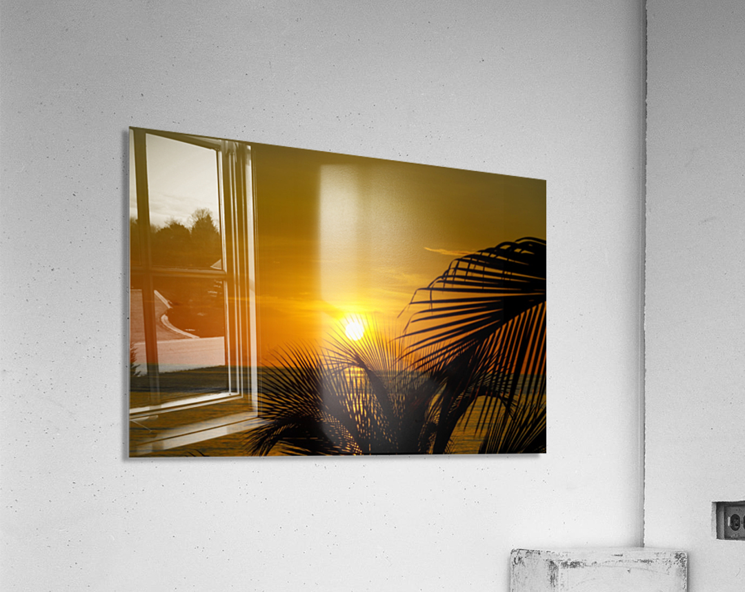 Sunrise at the palm tips  Acrylic Print