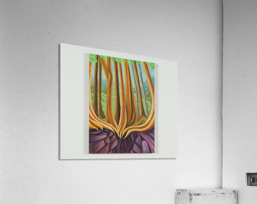 Cedar Edge  Acrylic Print