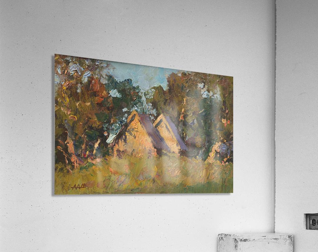 Unnamed_20x30_2010  Acrylic Print