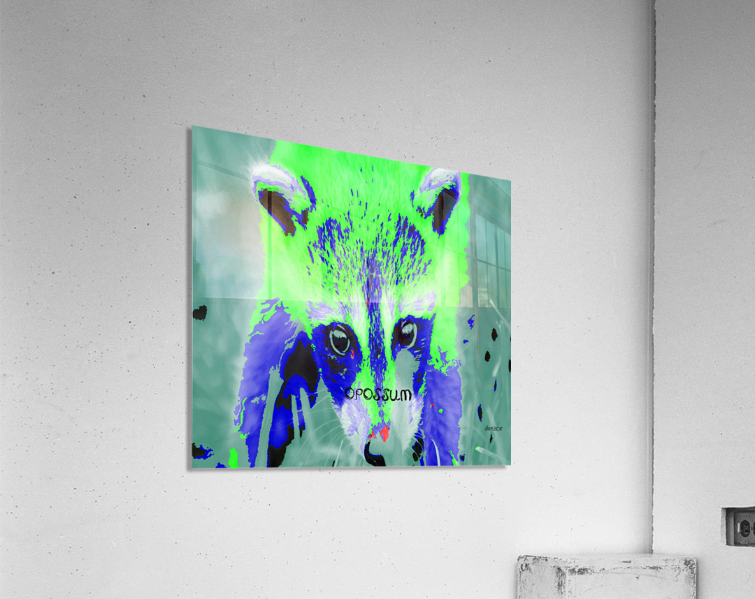 abstract Opossum  Acrylic Print