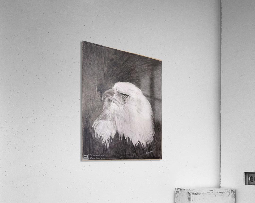 Eagle_DKS  Impression acrylique