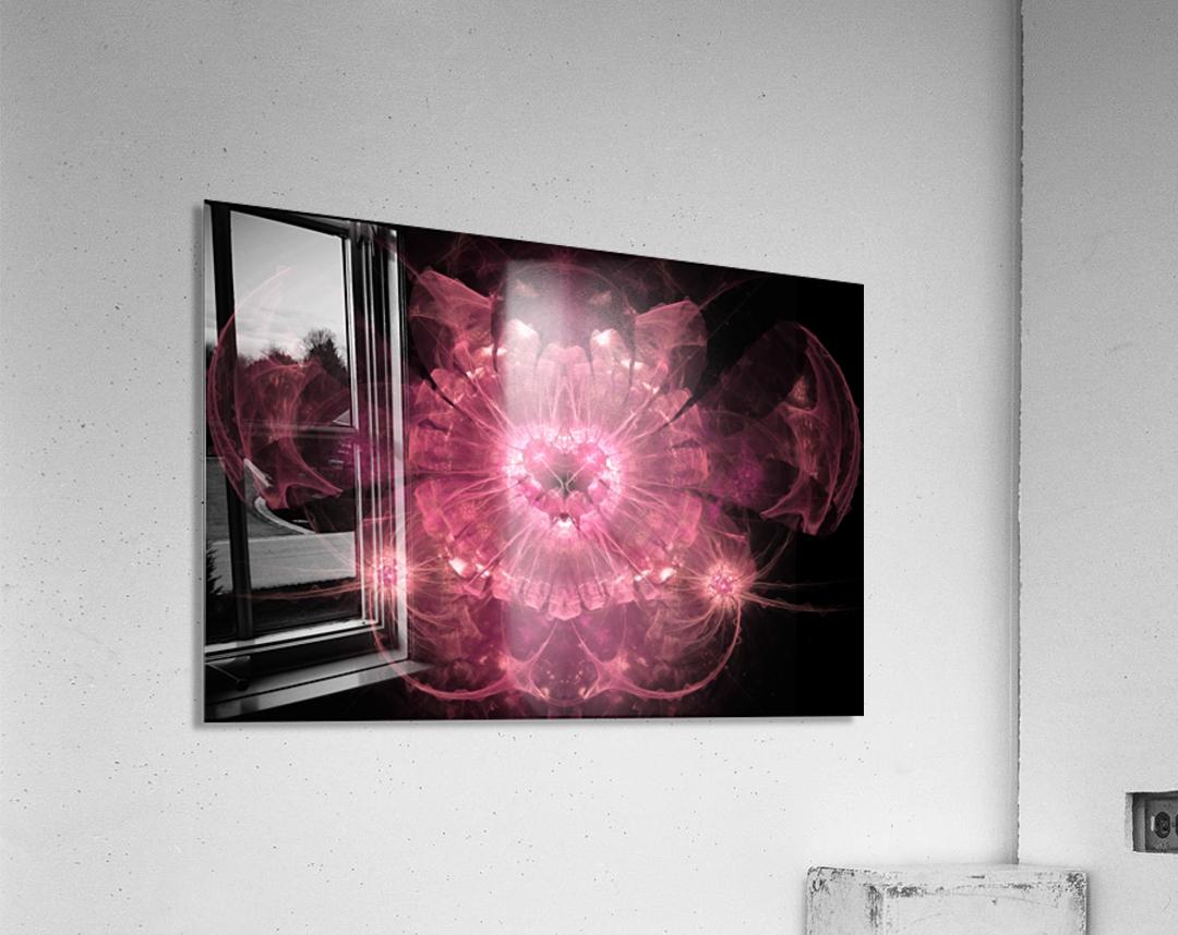 Anaya  Acrylic Print