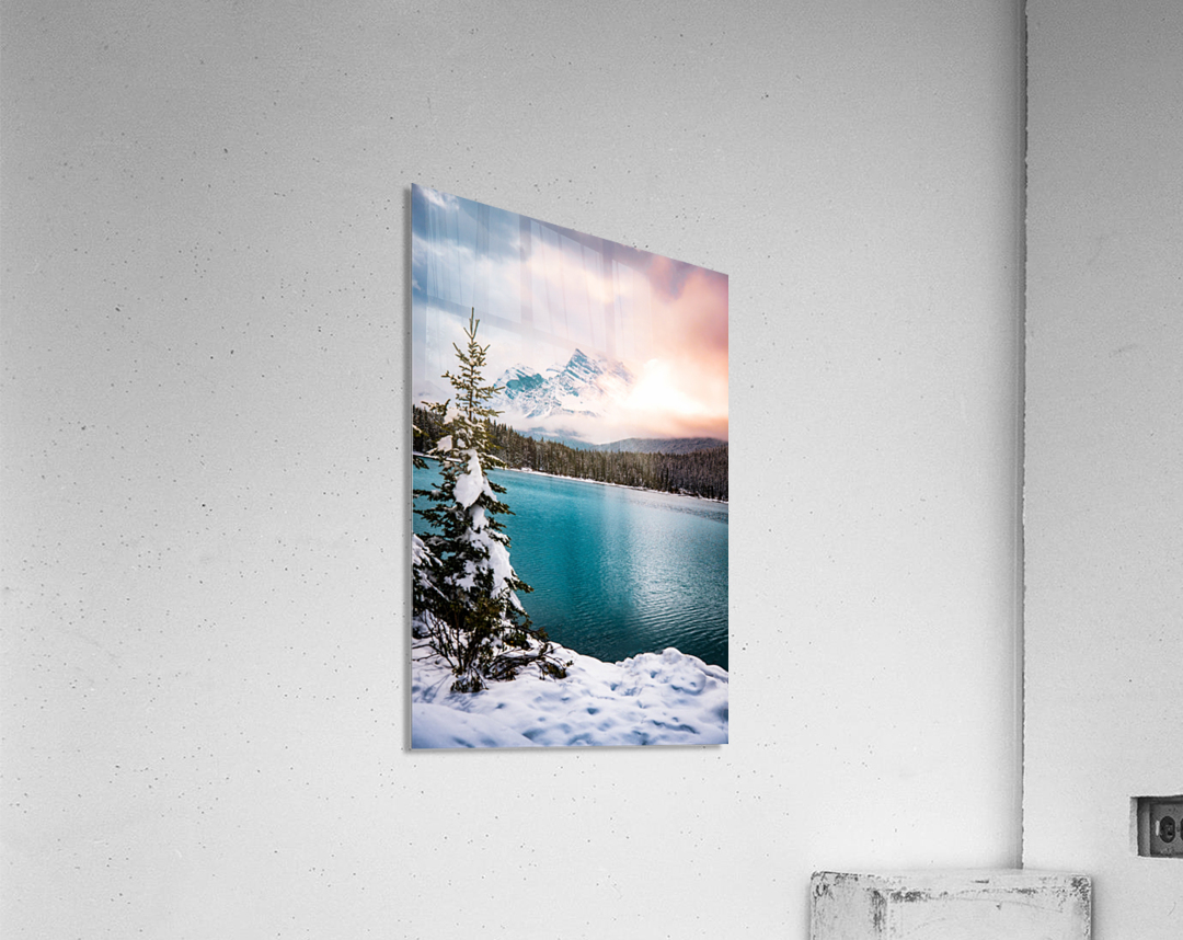 Winter Wonderland  Acrylic Print