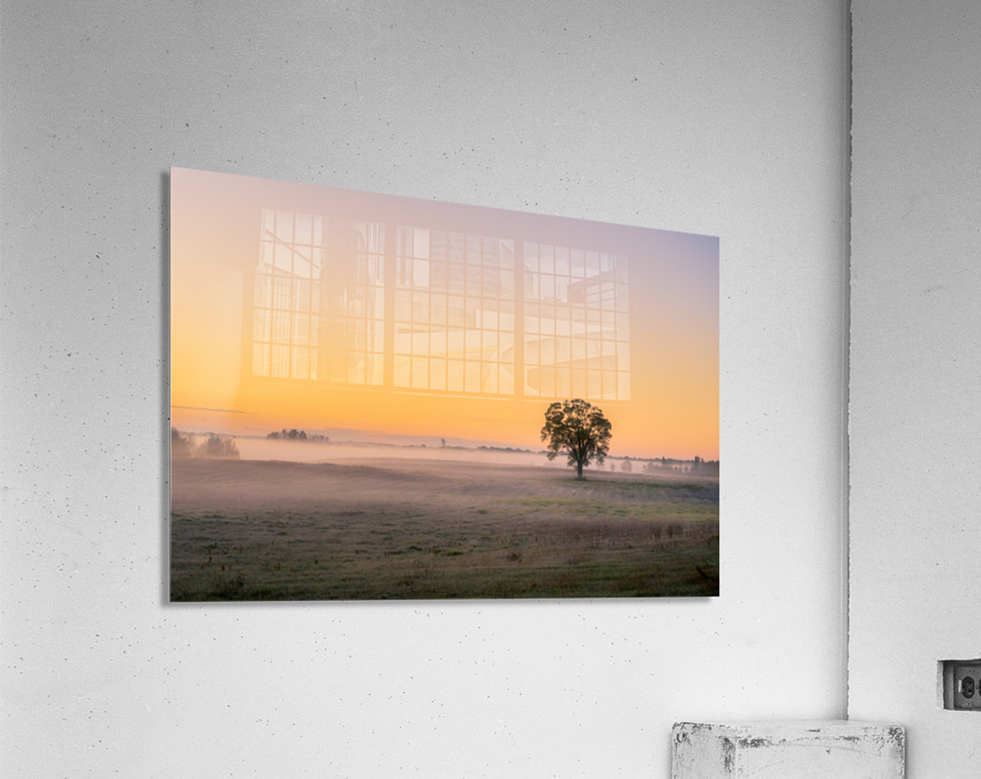 Moring Fog  Acrylic Print