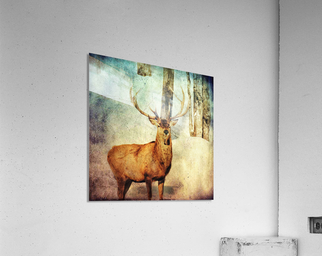 Dans les bois  Acrylic Print