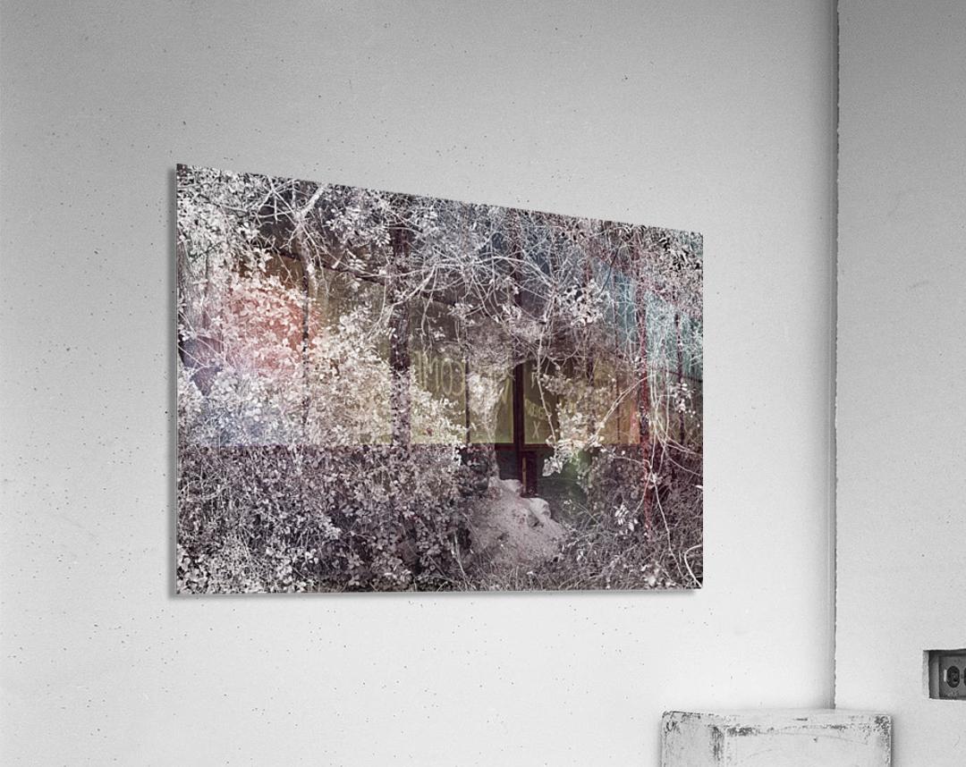Cave entrance  Acrylic Print