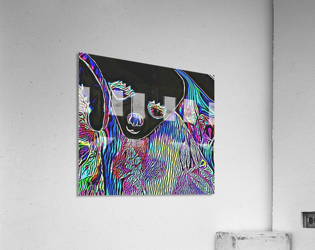 Neon Dreams  Acrylic Print