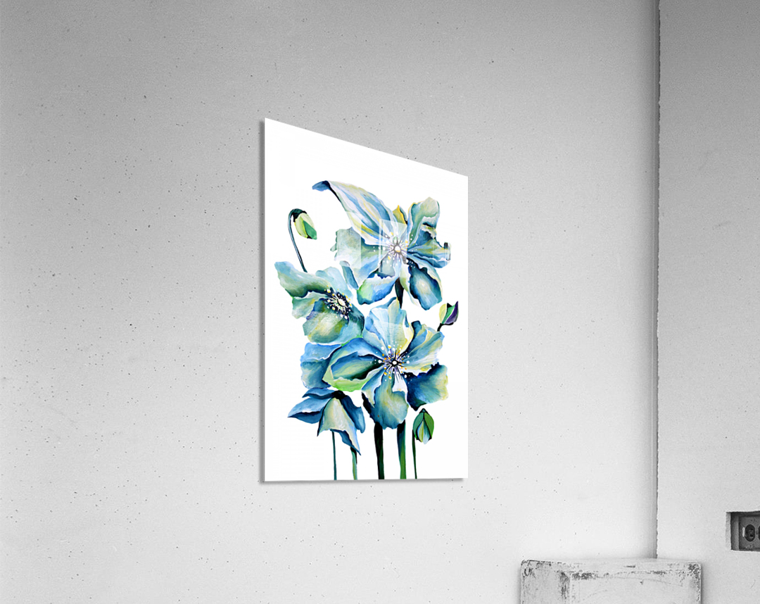 Blue Poppies Watercolor  Acrylic Print