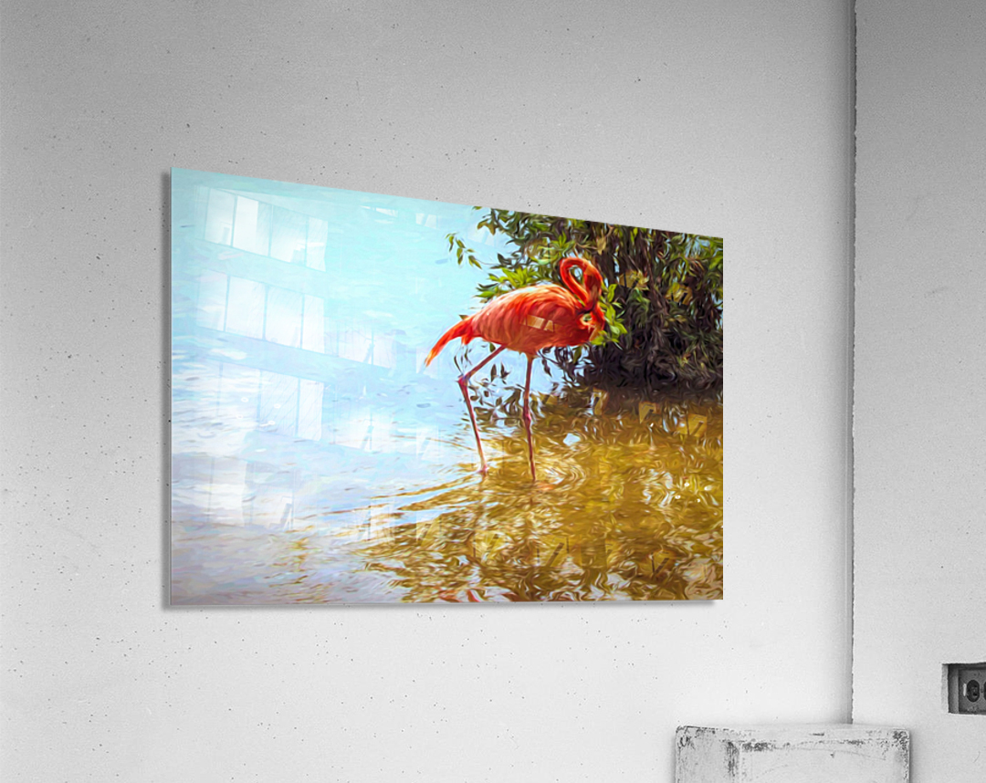 Pink Flamingo Wading In Water  Acrylic Print