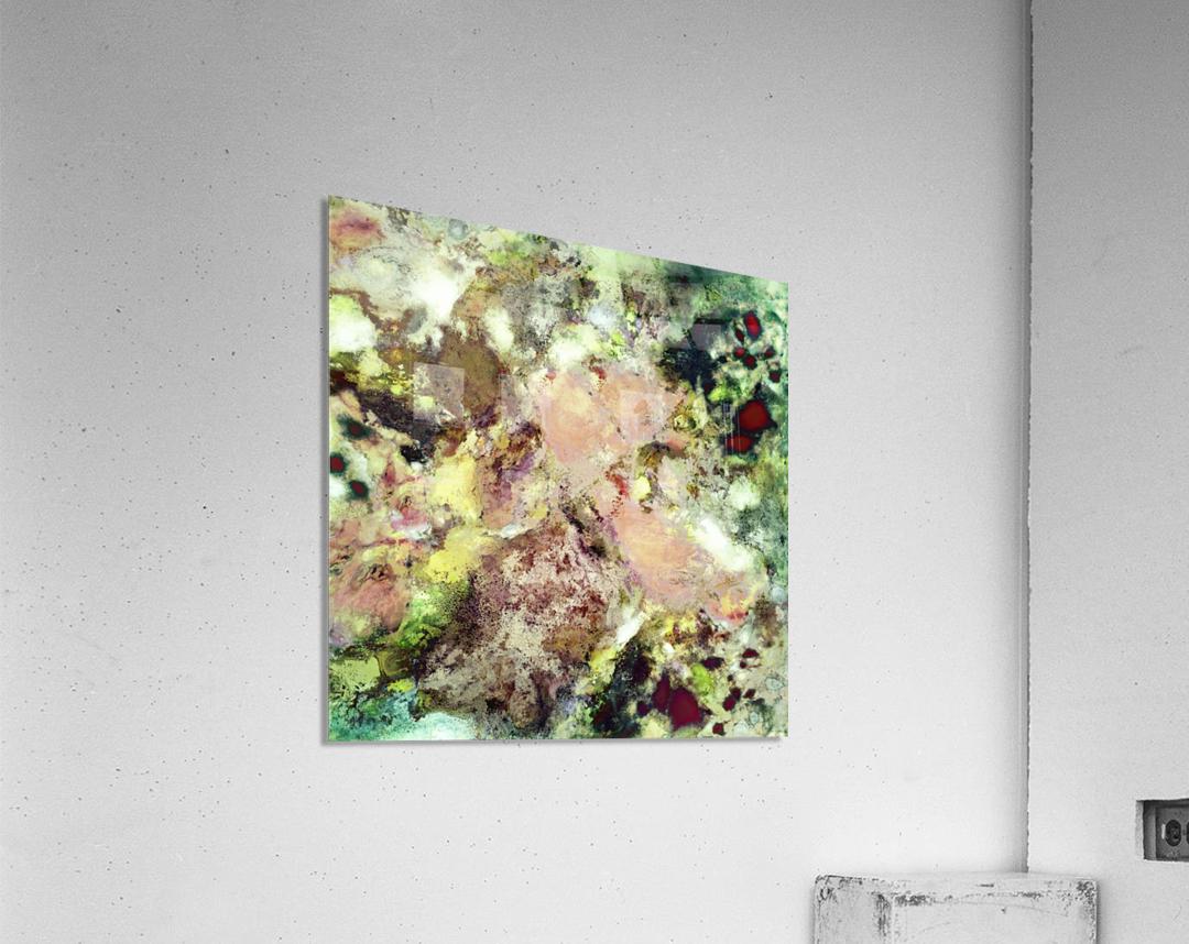 Sugar coated  Acrylic Print