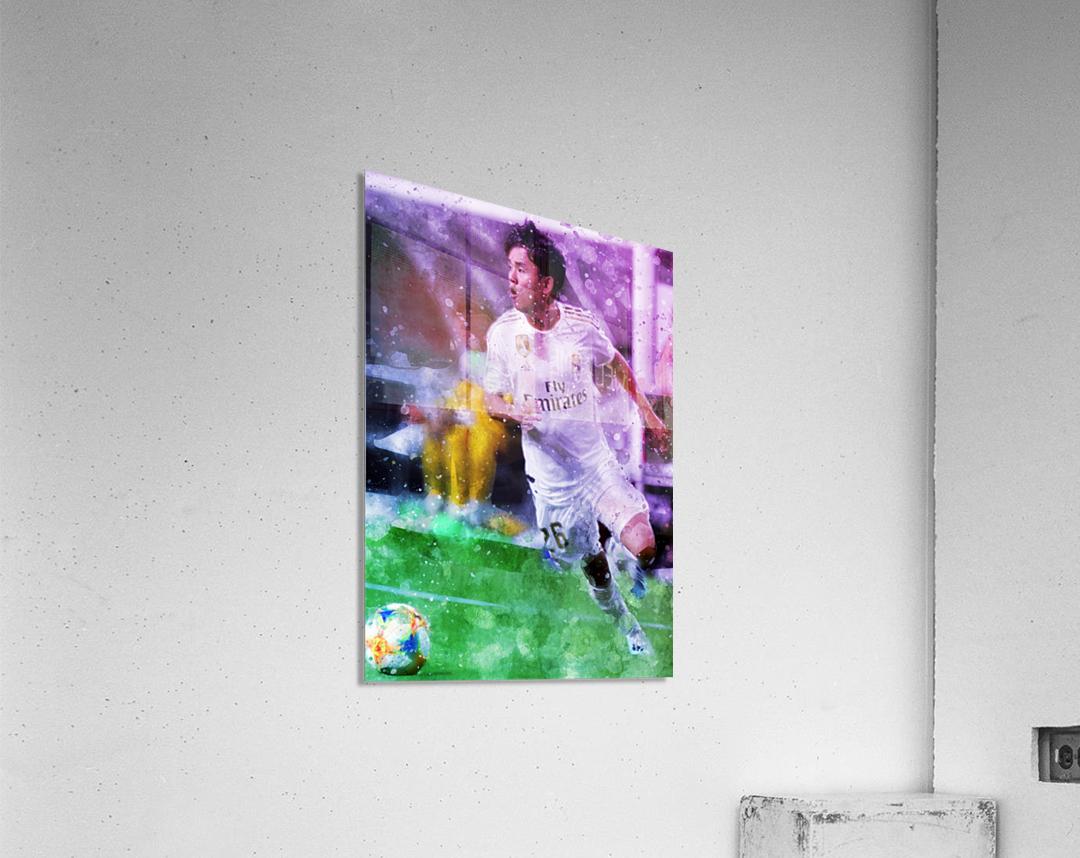 1  Acrylic Print