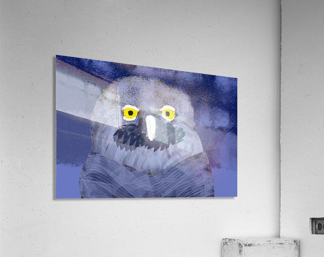 snow owl  Acrylic Print