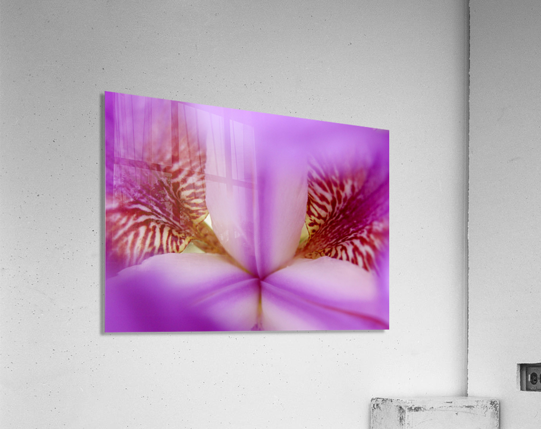 Abs 09_00008  Acrylic Print