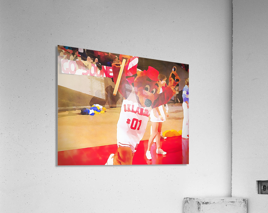 college mascot art top daug oklahoma sooners basketball art  Acrylic Print