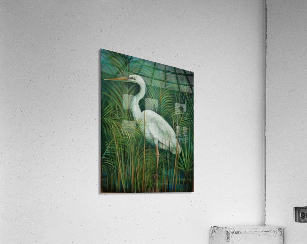white heron 2  Acrylic Print