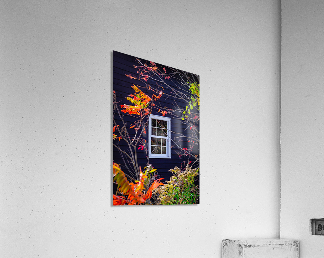 Autumn Window  Acrylic Print
