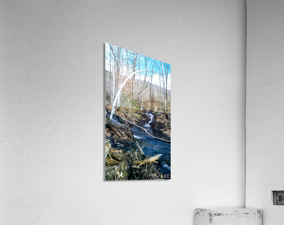 Brook through the Forest  Acrylic Print