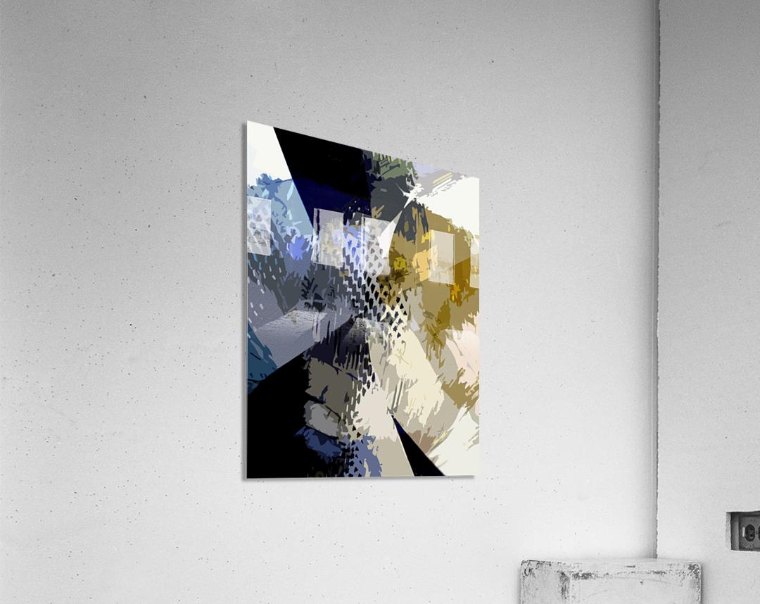 S H I A  Acrylic Print