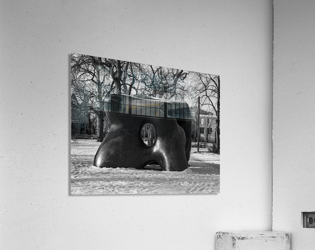 Two Large Forms at Grange Park 1  Acrylic Print
