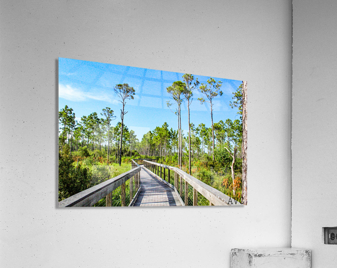Bridge Walk  Acrylic Print