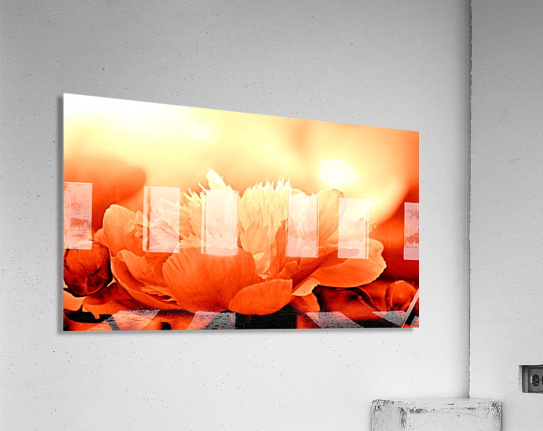 Heavenly Peony Orange  Acrylic Print