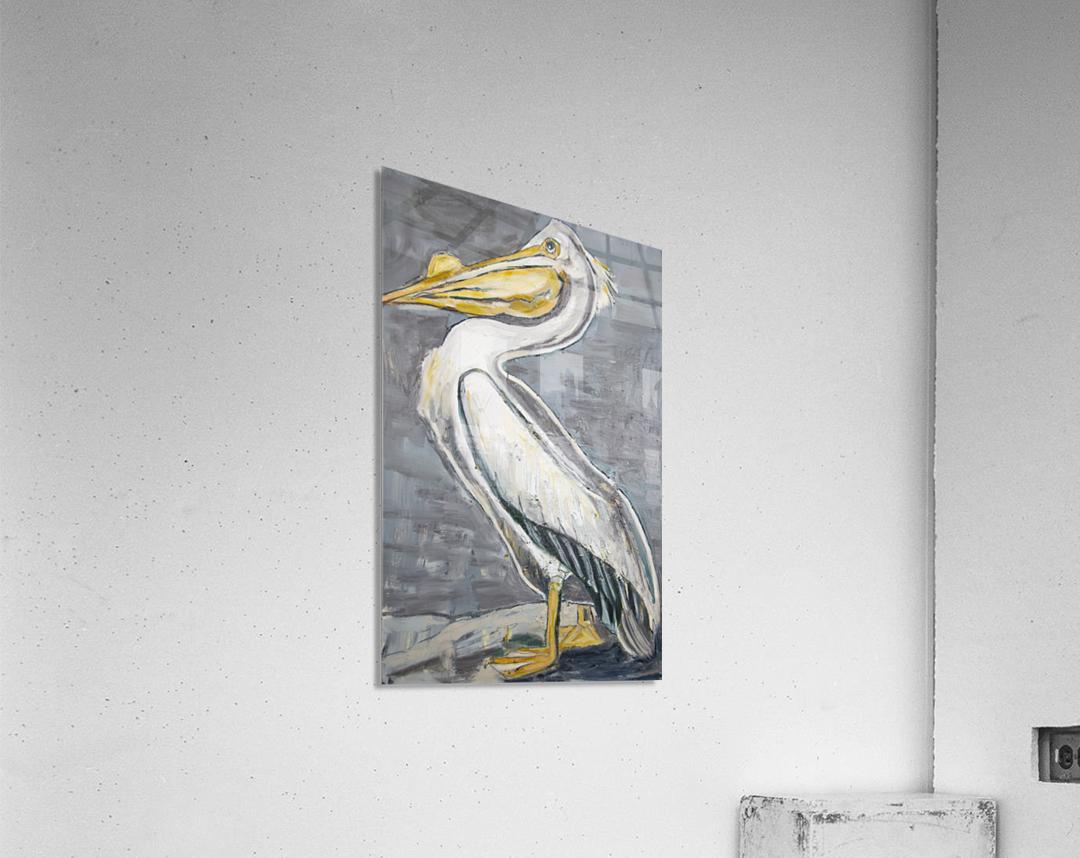 Louisiana White Pelican with Metallic Silver  Acrylic Print