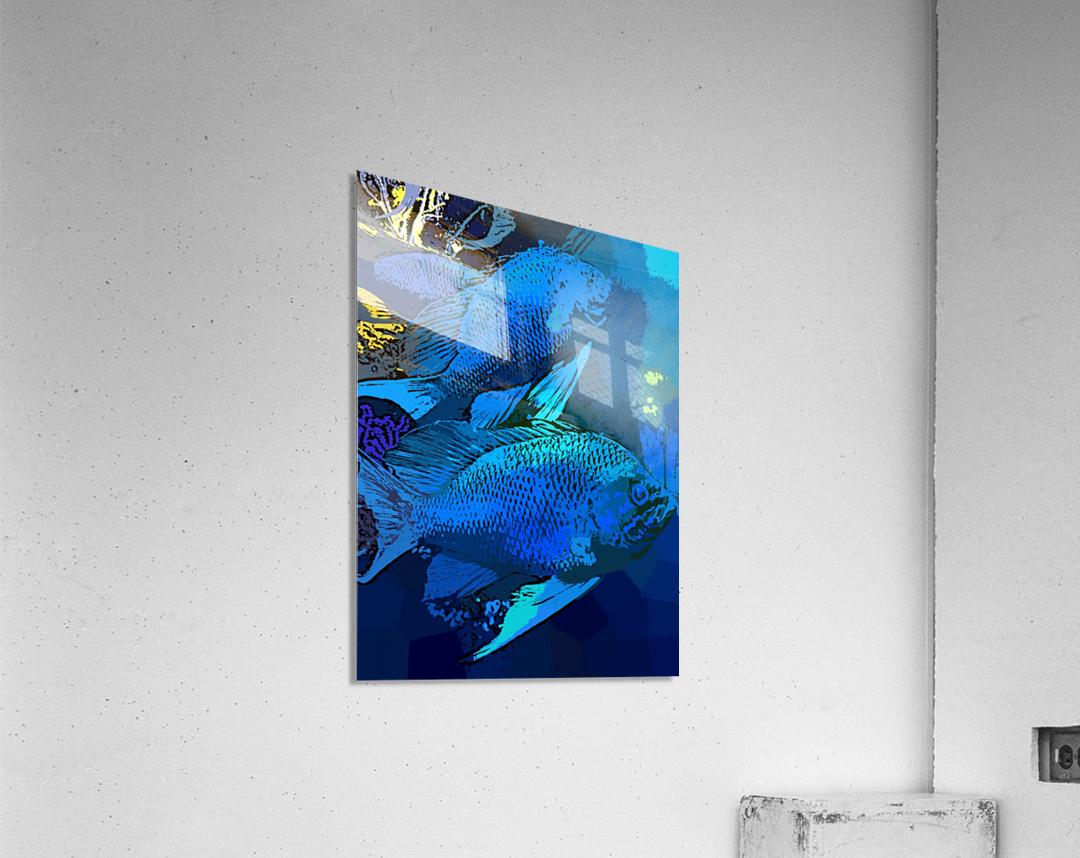 Splash of Ocean Life  Acrylic Print