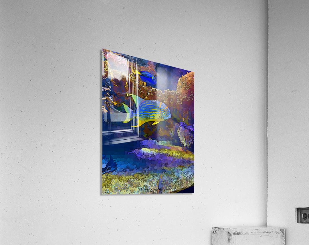 Venture into Unknown  Acrylic Print