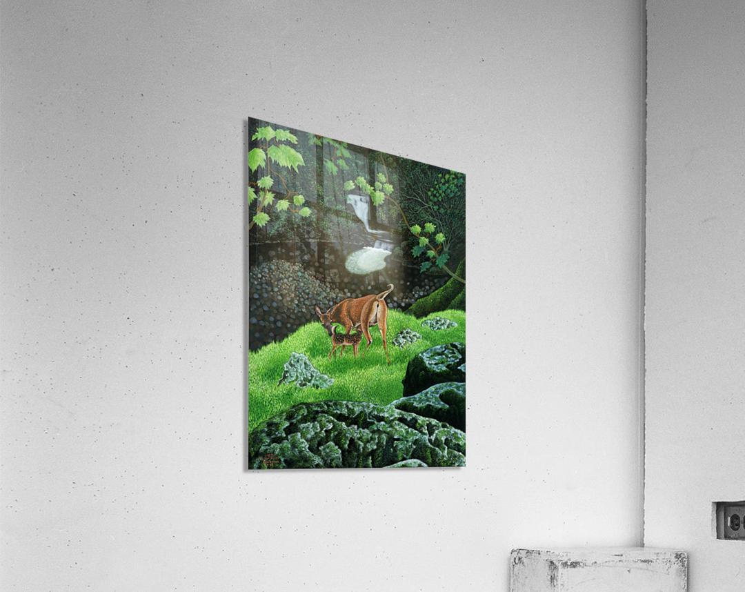1991 06  Acrylic Print