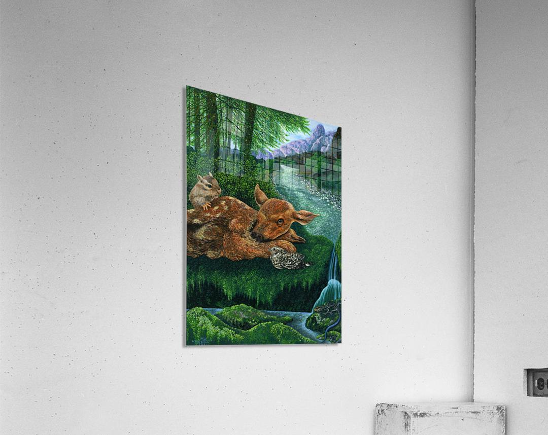 1991 05  Acrylic Print